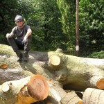 Nottingham tree surgeon Ben Saxton